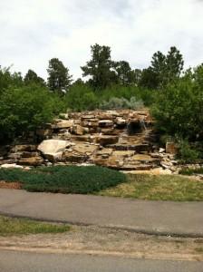 Landscaping-denver-reviews-10