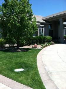 Landscaping-denver-reviews-12