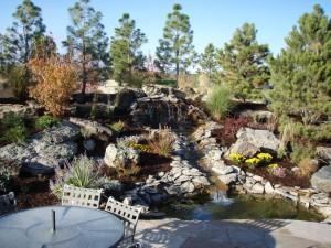Landscaping-denver-reviews-29