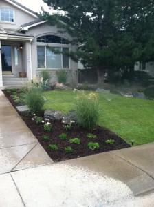 Landscaping-denver-reviews-6